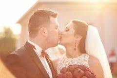 Mooi bruids paar in het zonlicht Stock Afbeeldingen