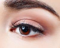 Mooi bruin oog met de close-up van wimperuitbreidingen royalty-vrije stock foto's