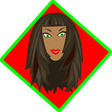 Mooi brunnettegezicht Stock Foto