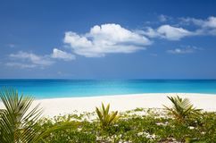 Mooi Caraïbisch Strand, Antigua royalty-vrije stock foto