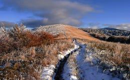 Mooi de herfstlandschap in de bergen Royalty-vrije Stock Afbeeldingen