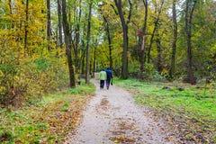 Mooi de herfstlandschap Hoger paar die in de herfstbos lopen royalty-vrije stock foto's