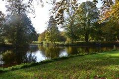 Mooi de Herfstlandschap met bomen langs water' s rand, die in het water nadenken stock foto