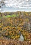 Mooi de herfstlandschap met een kleine rivier die onder bruine struiken en berkbomen stromen stock foto