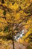 Mooi de herfstlandschap met een waterval op Zermatt-gebied stock fotografie
