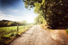 Mooi de herfstlandschap met landweg Stock Afbeeldingen
