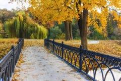 Mooi de herfstlandschap met rivier, brug en bomen Stock Foto