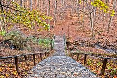 Mooi de herfstlandschap in New Jersey Stock Fotografie
