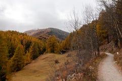 Mooi de herfstlandschap op Zermatt-gebied stock foto's