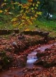Mooi de herfstlandschap van Griekenland stock foto's
