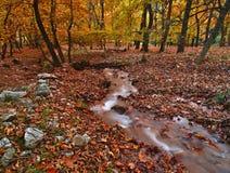 Mooi de herfstlandschap van Planitero in Kalavryta, Griekenland royalty-vrije stock foto