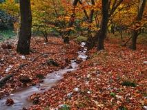 Mooi de herfstlandschap van Planitero in Kalavryta, Griekenland stock afbeeldingen