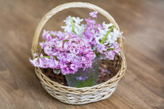 Mooi de lenteboeket van hyacinten in een houten mand Stock Foto