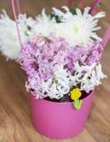 Mooi de lenteboeket van hyacinten in een roze mand Royalty-vrije Stock Foto