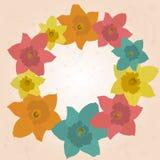 Het kaderjonquilles van de lente Stock Foto's