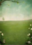 Mooi de lentelandschap Stock Foto's
