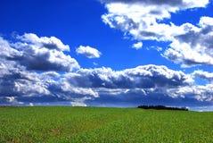 Mooi de lentelandschap Stock Afbeelding