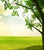 Mooi de lentelandschap Stock Afbeeldingen