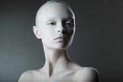 Mooi de studioportret van de meisjesmanier Royalty-vrije Stock Foto's