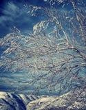 Mooi de winterlandscape Stock Afbeeldingen