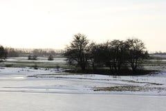Mooi de winterlandscape Royalty-vrije Stock Fotografie