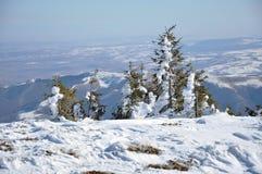 Mooi de winterlandscape Stock Foto