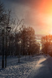 Mooi de winterlandscape Royalty-vrije Stock Foto