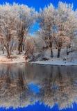 Mooi de winterlandscape Royalty-vrije Stock Afbeelding