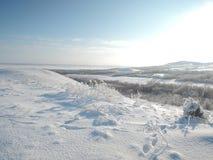 Mooi de winterlandscape Vallei met snow-covered bos, zon en gebied stock afbeeldingen