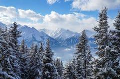 Mooi de winterlandschap stock afbeelding
