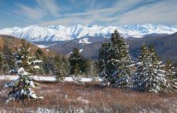 Mooi de winterlandschap, Altai-bergen Rusland Royalty-vrije Stock Foto