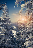 Mooi de winterlandschap in bergen Royalty-vrije Stock Fotografie