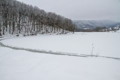 Mooi de winterlandschap in het bos Stock Afbeeldingen
