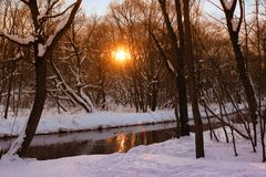 Mooi de winterlandschap in het bos met rivier in zonsondergangtijd Het oranje landschap van de de winterzonsondergang Royalty-vrije Stock Foto's
