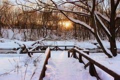 Mooi de winterlandschap in het bos met rivier in zonsondergangtijd Het oranje landschap van de de winterzonsondergang Stock Afbeelding