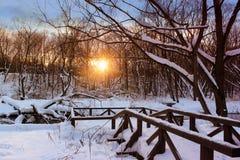 Mooi de winterlandschap in het bos met rivier in zonsondergangtijd Het oranje landschap van de de winterzonsondergang Stock Foto
