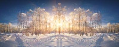 Mooi de winterlandschap in het stadspark Royalty-vrije Stock Afbeelding