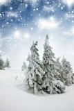 Mooi de winterlandschap met sneeuw behandelde bomen Stock Afbeelding