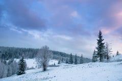 Mooi de winterlandschap met sneeuw behandelde bomen. Stock Afbeelding