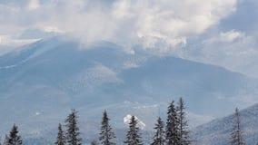 Mooi de winterlandschap met sneeuw behandelde bomen De bergen van de winter stock footage