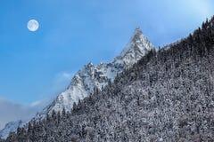 Mooi de winterlandschap met sneeuw behandelde bomen, Maan over Mo Royalty-vrije Stock Foto's