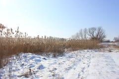 Mooi de winterlandschap op de achtergrond van blauwe hemel Stock Foto
