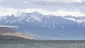 Mooi de winterlandschap van Meer Genève en Zwitserse Alpen met gletsjer op pieken stock video