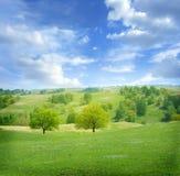 Mooi de zomerlandschap stock afbeelding