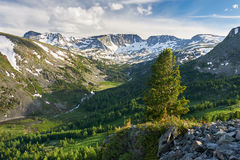 Mooi de zomerlandschap, Altai-bergen Rusland Stock Afbeeldingen