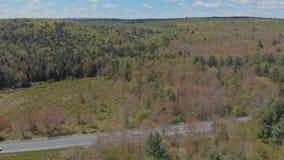 Mooi de zomerlandschap in de bergen in Pocono-Bergen Pennsylvania de V.S. stock videobeelden