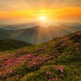 Mooi de zomerlandschap, de bergen van Europa, de reis van Europa, schoonheidswereld Stock Foto's