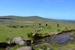 Mooi de zomerlandschap in het Nationale Park van Dartmoor, Engeland stock fotografie