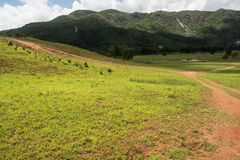 Mooi de zomerlandschap met weg in de berg van Thailand Stock Foto's