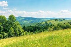 mooi de zomerplatteland in bergen stock fotografie